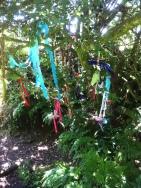 Votive ribbons adorning a tree near Sancreed well