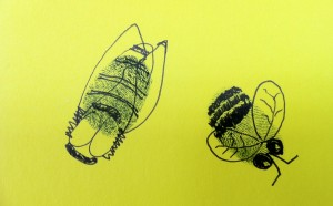 thumb-print bees, part of the 'bee happy' collaborative community art project raising awareness of the declining population.  The kites became part of the 'swarm TV' project.