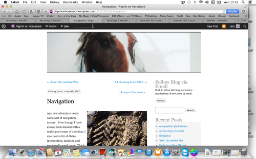 Screen-shot of new blog