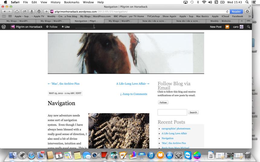 Screen-shot of new blog
