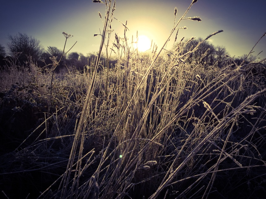 Sunrise on a cold and frosty morning